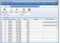 Ciel Comptes Personnels Standard 2011 screen 2