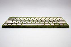 clavier bois mousse.