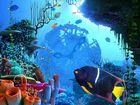 Coral Clock : une horloge aquatique comme écran de veille