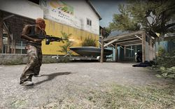 Counter Strike Global Offensive (6)
