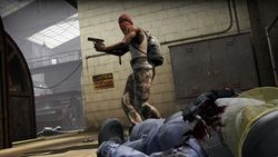 Counter Strike Global Offensive (8)