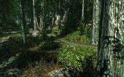 CryEngine - Image 2