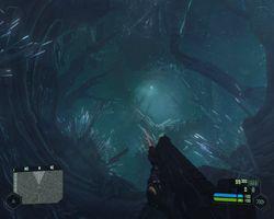Crysis   Image 110