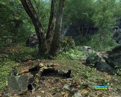 Crysis   Image 91