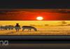Cubot Note S : écran 5,5 pouces et batterie 4 150 mAh pour 65 euros