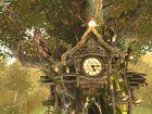 Cuckoo clock : une pendule qui fait coucou ! Coucou !