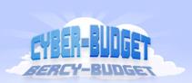 Cyber budget