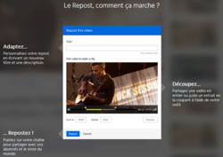 Dailymotion-Repost