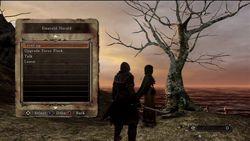 Dark Souls 2 - 25