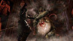 Dark Souls 2 - 8