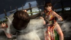 Dead or Alive 5 (14)