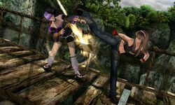 Dead or Alive Dimensions - Image 2