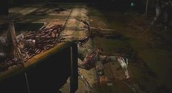 Dead Space Extraction   7