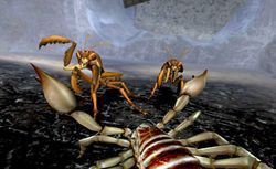 Deadly Creatures   Image 10