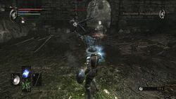 Demon Souls - 29