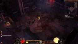 Diablo 3 (26)