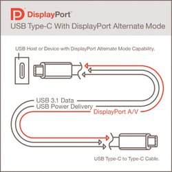 DisplayPort-Alt-Mode