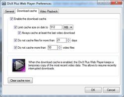 DivX Web Player screen1