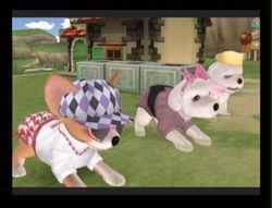 Dogz 2 Wii (61)