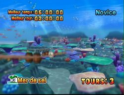 Donkey Kong Jet Race (11)