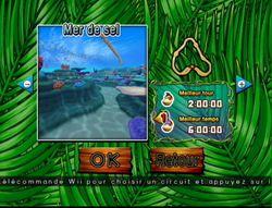 Donkey Kong Jet Race (8)