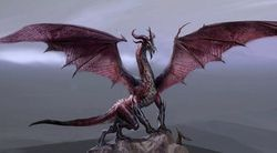 Dragon Age 2 - Image 6