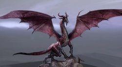Dragon Age 2 - Image 6