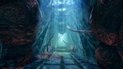 Dragon Age Origins : Awakening - 3