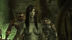 Dragon Age Origins   Image 12