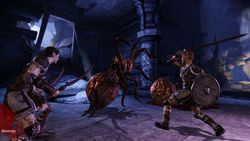 Dragon Age Origins - Image 35