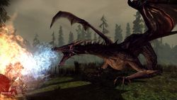Dragon Age Origins - Image 41