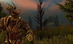 Dragon Age Origins - Image 53
