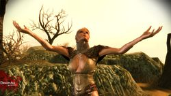 Dragon Age Origins The Awakening - Image 8