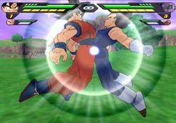 Dragon Ball Z Budokai Tenkaichi 2 (10)
