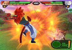 Dragon Ball Z Budokai Tenkaichi 2 (2)