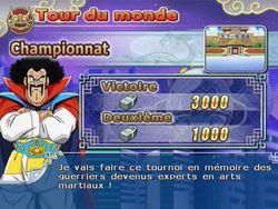Dragon Ball Z : Budokai Tenkaichi 3   17