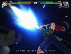 Dragon Ball Z : Budokai Tenkaichi 3   28