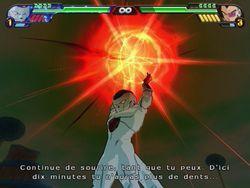 Dragon Ball Z : Budokai Tenkaichi 3   31