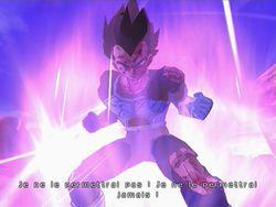Dragon Ball Z : Budokai Tenkaichi 3   33