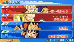 Dragon Ball Z Tenkaichi Tag Team