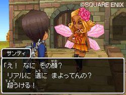 Dragon Quest IX (10)