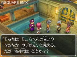 Dragon Quest IX - 12