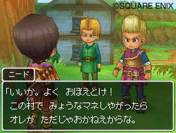 Dragon Quest IX - 14