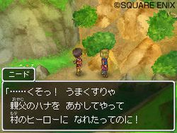 Dragon Quest IX - 16