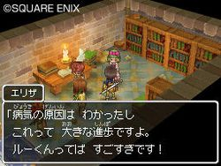 Dragon Quest IX - 24