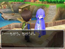 Dragon Quest IX - 30