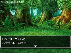 Dragon Quest VI : Realms of Reverie - 11