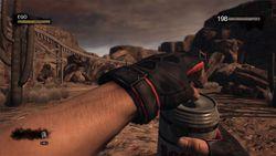 Duke Nukem Forever - Image 26