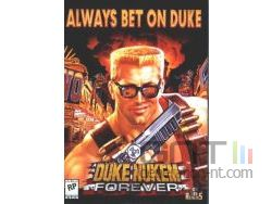 Duke nukem forever small