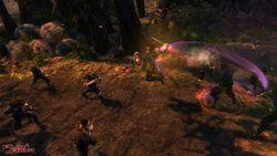 Dungeon Siege 3 - Image 15